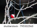 fishing bobber entangled in the ... | Shutterstock . vector #795332563
