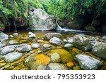 Atlantic Rainforest River...