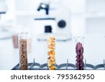 chemical laboratory of the food ... | Shutterstock . vector #795362950