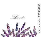 background with lavender. vector   Shutterstock .eps vector #795368950