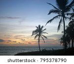 dawn  silhouettes of palm trees ... | Shutterstock . vector #795378790