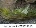 The base of the magnolia bluff in Seattle, Washington.