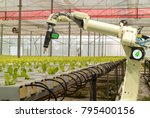 smart robotic in agriculture... | Shutterstock . vector #795400156