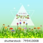 colorful spring graphic flower... | Shutterstock .eps vector #795413008
