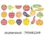 names of fruits in fruit shaped ... | Shutterstock .eps vector #795481249