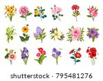 garden flowers collection | Shutterstock .eps vector #795481276