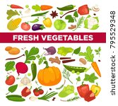 fresh vegetables advertisement... | Shutterstock .eps vector #795529348