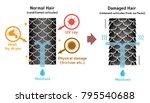comparison illustration of... | Shutterstock .eps vector #795540688
