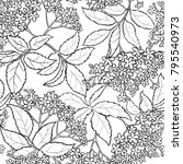 elderflower seamless pattern   Shutterstock .eps vector #795540973