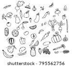 a variety of vegetables and...   Shutterstock .eps vector #795562756