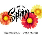 daisy flower background and... | Shutterstock .eps vector #795575890