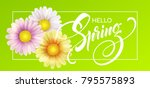 daisy flower background and... | Shutterstock .eps vector #795575893