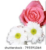 beautiful bouquet of roses and ... | Shutterstock . vector #795591064