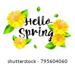 hello spring background with... | Shutterstock .eps vector #795604060