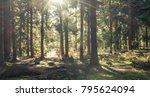 sunlight breaking through the... | Shutterstock . vector #795624094