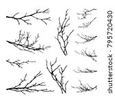 realistic set of tree branches... | Shutterstock . vector #795720430
