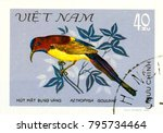 Small photo of Ukraine - circa 2018: A postage stamp printed in Vietnam show bird Goulds Sunbird or Aethopyga gouldiae. Series: Birds. Circa 1981.