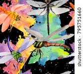 Stock photo exotic dragonfly wild insect pattern in a watercolor style full name of the insect dragonfly 795751660
