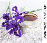 violet irises xiphium  bulbous... | Shutterstock . vector #795810139