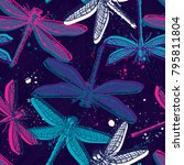 hand drawn stylized dragonflies ... | Shutterstock .eps vector #795811804