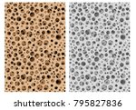 seamless micro bone structure... | Shutterstock .eps vector #795827836