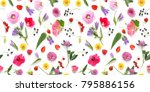 seamless pattern from plants ...   Shutterstock . vector #795886156
