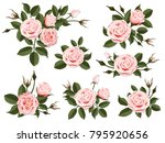 Stock vector pink rose boutonniere set for floral design of a greeting wedding or invitation card bouquet of 795920656