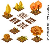 garden or farm isometric tile... | Shutterstock .eps vector #795926839