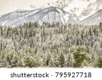 Snowy Pine Forest At Edge Of...