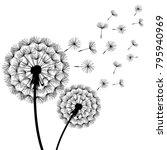beautiful stylish nature white...   Shutterstock .eps vector #795940969