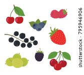 Berries Set Vector Illustratio...