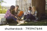 Small photo of College students having discussion under tree on campus, preparing for exams