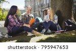 group of friends sitting under... | Shutterstock . vector #795947653