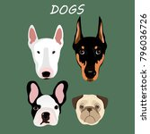 vector illustration with dogs.... | Shutterstock .eps vector #796036726