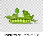 vector photo realistic pods of... | Shutterstock .eps vector #796074310