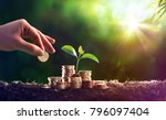 growing plant on coins money  ... | Shutterstock . vector #796097404