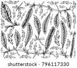 sea vegetables  illustration... | Shutterstock .eps vector #796117330