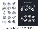blueberries   detailed hand...   Shutterstock .eps vector #796120198