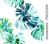 pinstripe sea shell. curl... | Shutterstock .eps vector #796151344