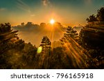 sunset forest with sunrays... | Shutterstock . vector #796165918