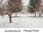 Winter Scene In Backyard  Snow...