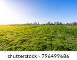 panoramic cityscape with green... | Shutterstock . vector #796499686