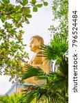 golden sitting buddha statue in ... | Shutterstock . vector #796524484