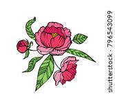 vector peony coloring book page ... | Shutterstock .eps vector #796543099