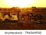pushkar. rajasthan. india  ... | Shutterstock . vector #796564930