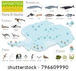 isometric 3d antarctica flora... | Shutterstock .eps vector #796609990