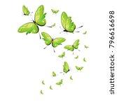 beautiful green butterflies ... | Shutterstock .eps vector #796616698