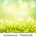 bright spring background....   Shutterstock . vector #796625158