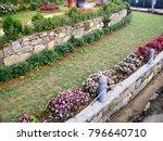 a beautiful landscaped garden... | Shutterstock . vector #796640710