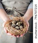 hands of woman holding a nest... | Shutterstock . vector #796707214